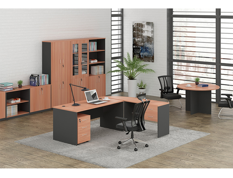 CF-2000X File Cabient Wooden Frame with Glass Door