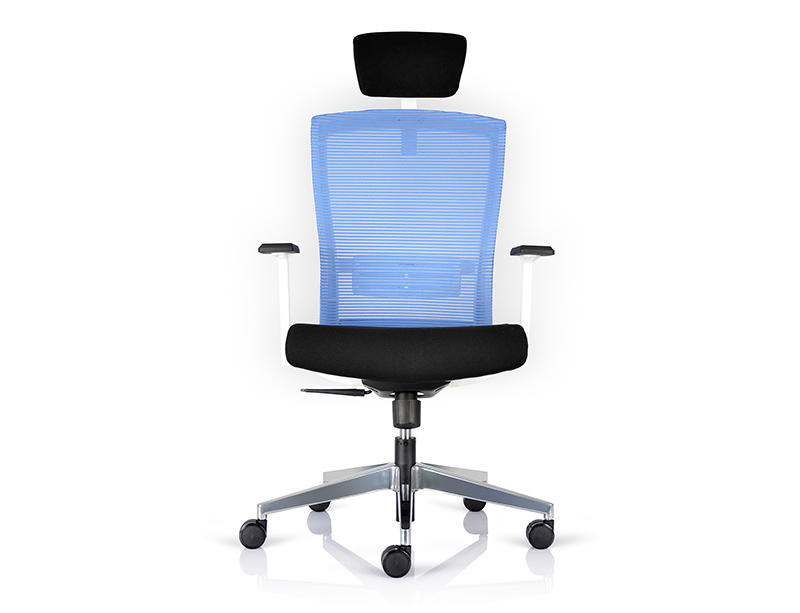 CF-BS-01HW High Back Office Chair with Headrest