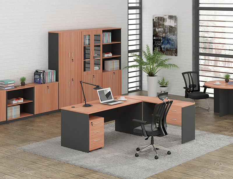 Wooden Office Table with Storage Cabinet