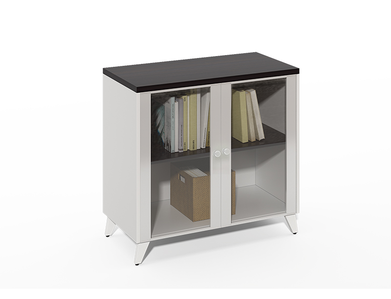 Competitive Price Aluminum frame with 2 glass doors file cabinet and shelf